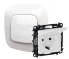 Розетка электрическая с заземлением с крышкой, автоматические клеммы, белый, Legrand Valena Allure (753021/754845)
