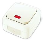 Выключатель одноклавишный с подсветкой, IP54, настенного монтажа, белый VI-KO Palmiye 90555419