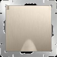 Розетка влагозащищенная, с заземлением, крышкой, шторками, WL10-SKGSC-01-IP44 - шампань рифленый, Werkel