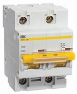 Выключатель автоматический двухполюсный 63А С ВА 47-100 10кА IEK (MVA40-2-063-C)