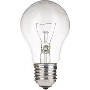 Лампа накаливания местного освещения МО 60вт 24в Е27